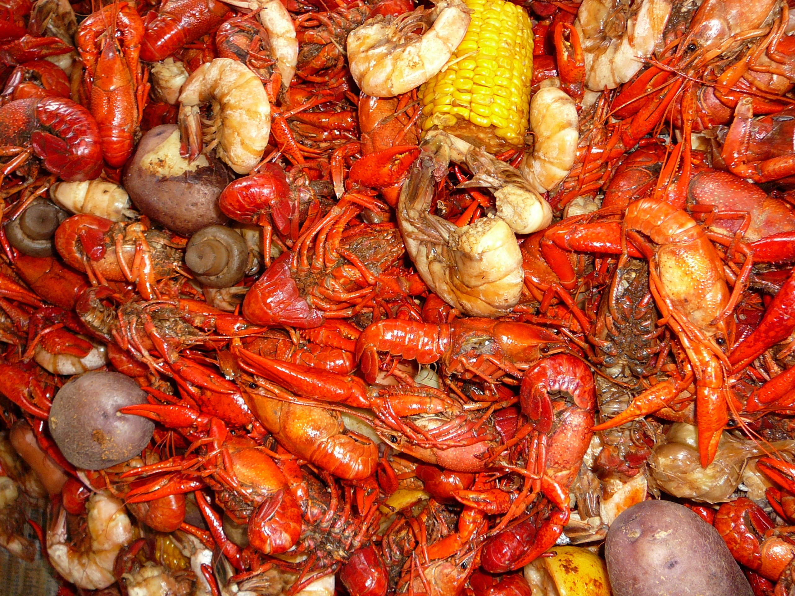 ... crawfish season and the weather is picture perfect for a boil in the